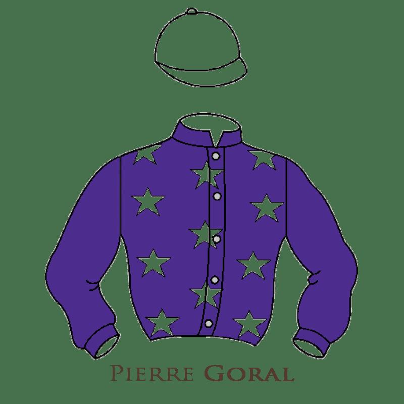 Casaque Goral chevaux de courses