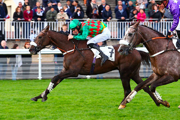 Auteuil - Prix Cambaceres - 2017