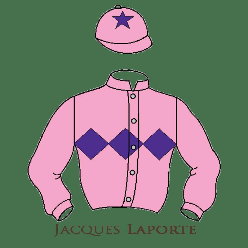 Casaque Laporte chevaux de courses